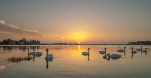 Chichester Harbour: Yacht Charter Port of the Week